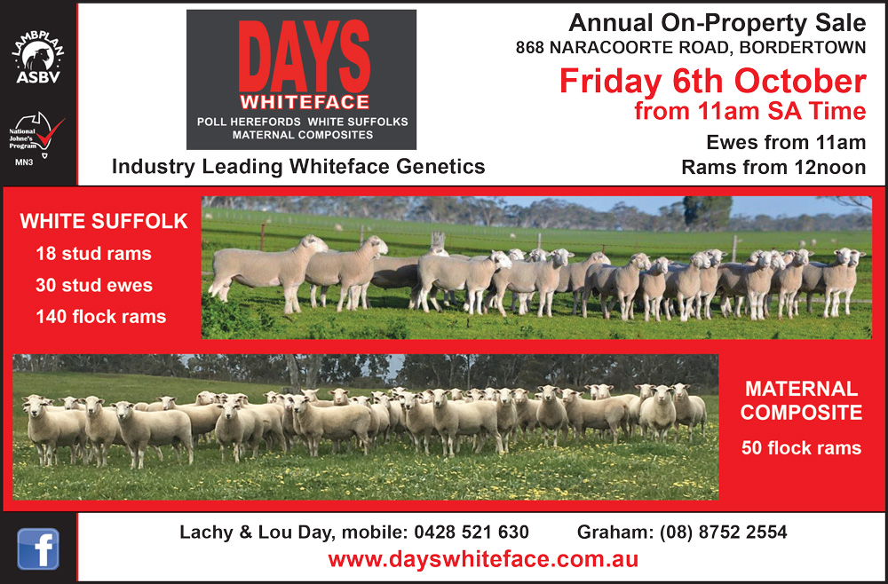 Days Whiteface Annual On Property Sale
