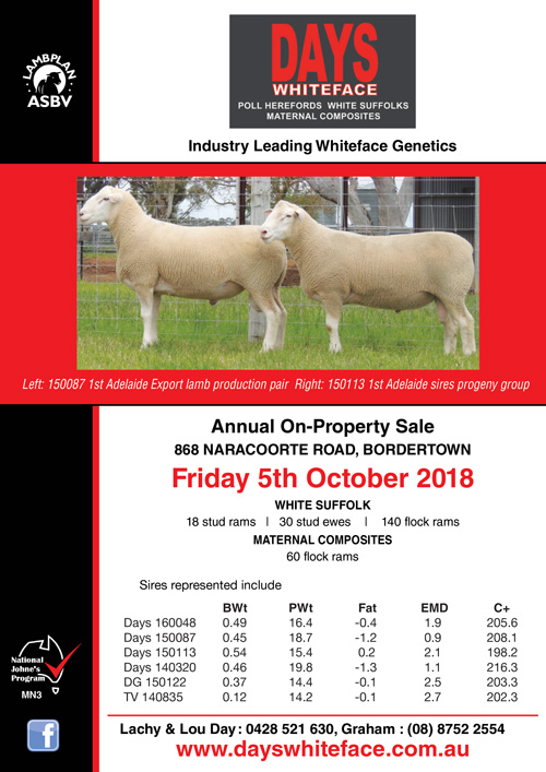 Days Whiteface Annual On Property Sheep Sale 2018