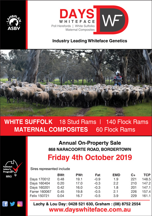 Days Whiteface 2019 Ram Sale
