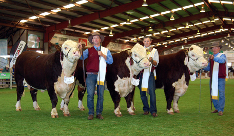 Presidents Shield Team 2010 Held by Lachy, David Parish and Graham (Harry) Sons of these bulls available in 2012
